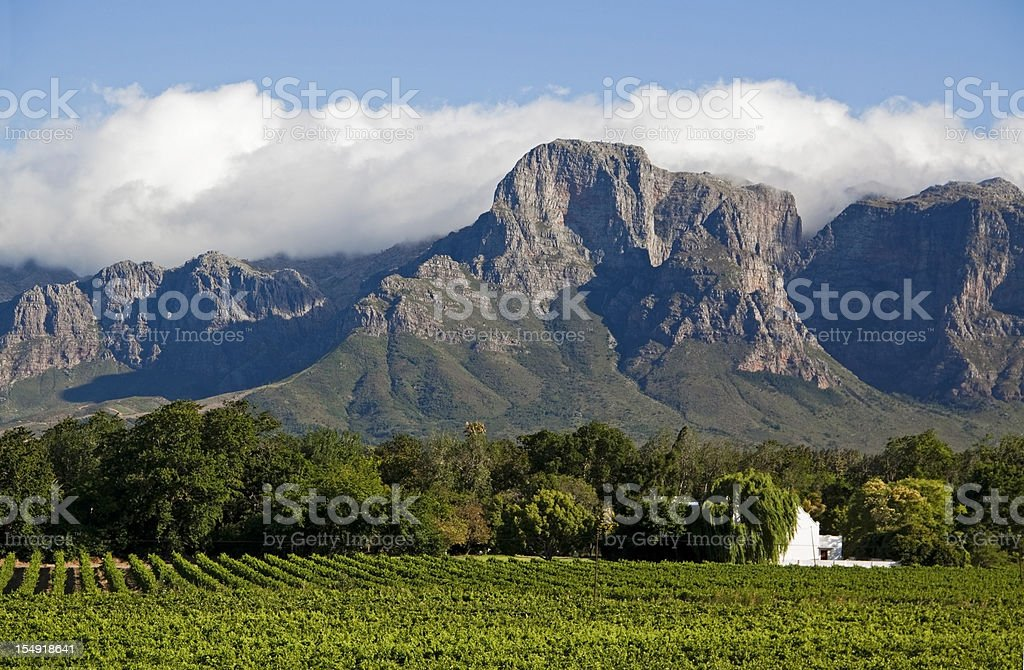 South Africa Wine Country stock photo