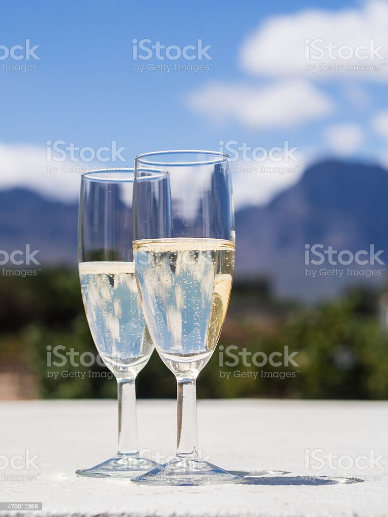 South African white sparkling wine in a garden stock photo