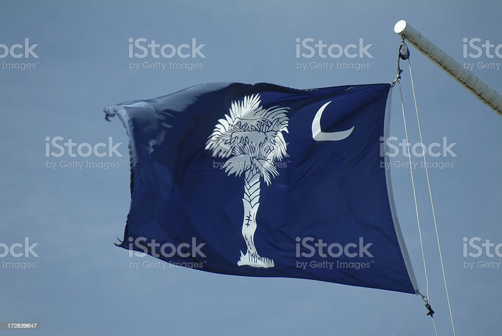 South Carolina Flag royalty-free stock photo
