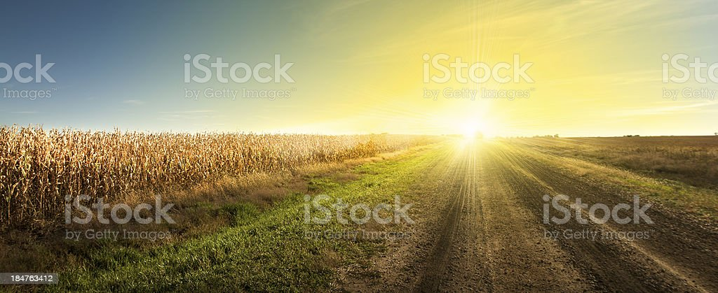 South Dakota Sunrise, Good Morning Drive on South Dakota Country Road. stock photo