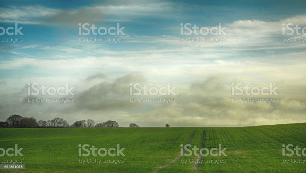 South Downs National Park in East Sussex stock photo
