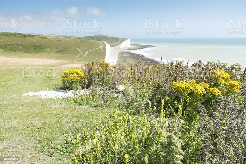 South Downs Way in Summer, nr Eastbourne, UK stock photo