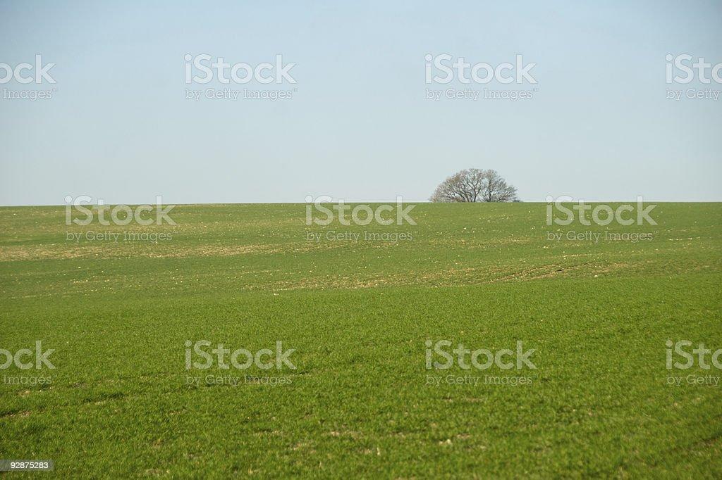 South Downs Winter Landscape stock photo