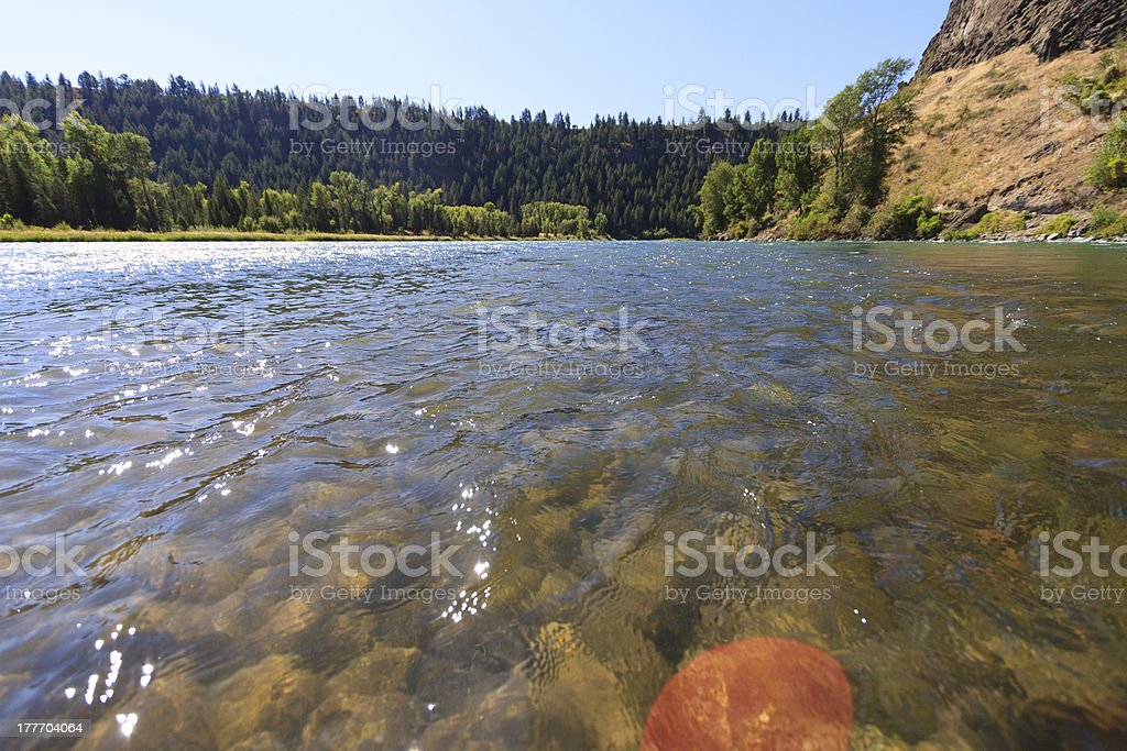 South Fork Of The Snake River royalty-free stock photo