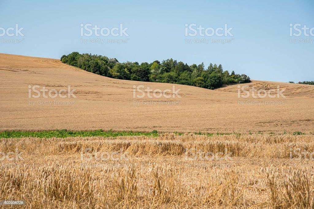 South Moravia stock photo