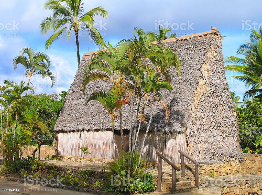 South Pacific island hut stock photo