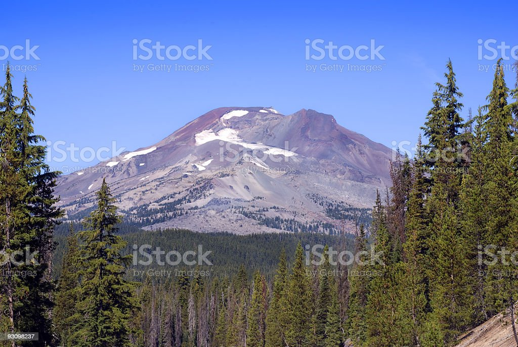 South Sister Mountain through the Trees royalty-free stock photo