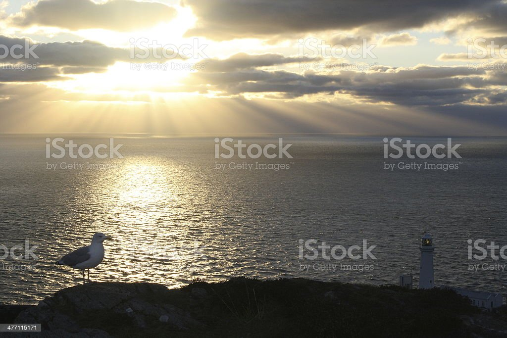 South Stack Lighthouse nearing Sunset stock photo