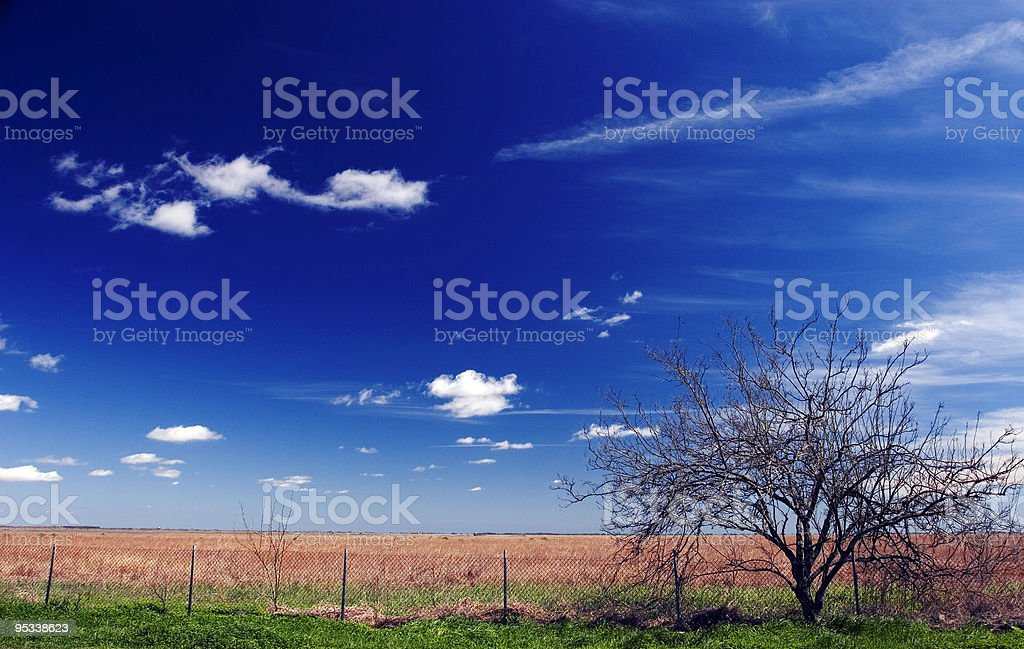 South Texas Prairie stock photo