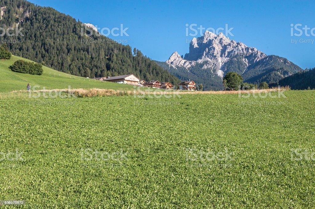 South Tyrol in The Italian Alps stock photo