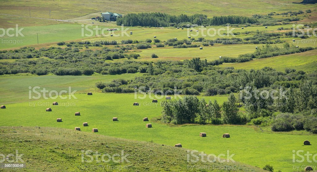 Southern Alberta foothills, range land, and Rocky Mountains stock photo
