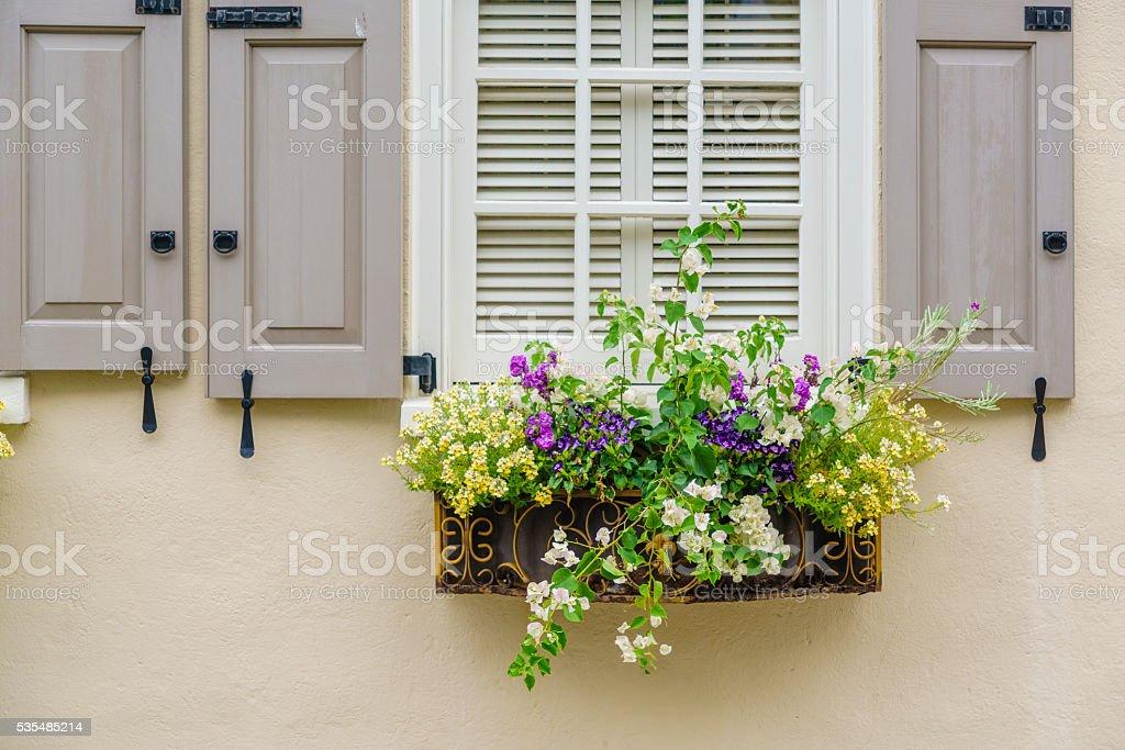 Southern beauty. Window decorated by flowers, Charleston, South Carolina stock photo