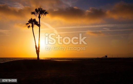 California Beaches At Sunset With Palm Trees