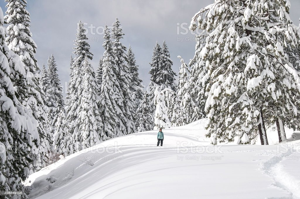 Southern Cascades snow stock photo