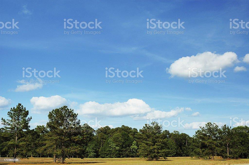 Southern Georgia Landscape royalty-free stock photo