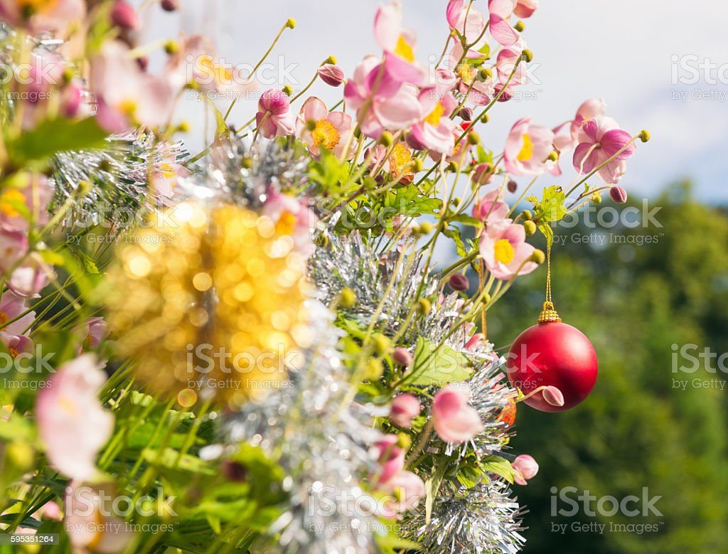Southern Hemisphere - Christmas in warm summer weather stock photo