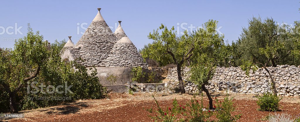 Southern Italy: clay soil, olive trees, trullo building royalty-free stock photo