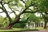 Southern Mansion in Mobile Alabama