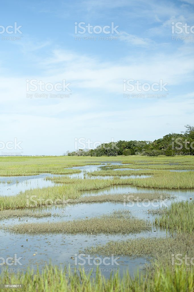 Southern Marsh stock photo