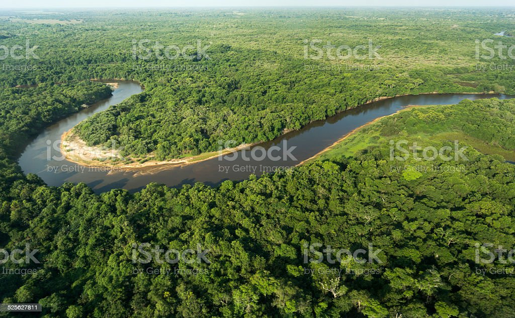 Southern Pantanal from above. stock photo