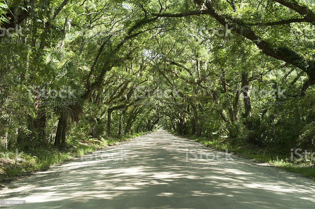 Southern Road royalty-free stock photo