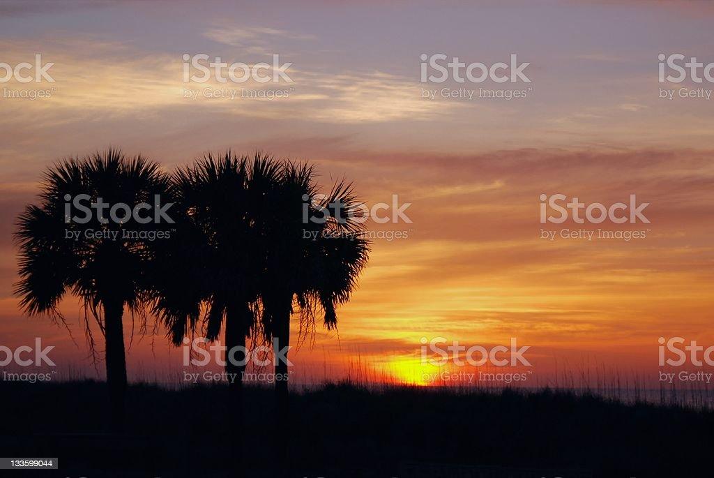 Southern Shore Sunrise royalty-free stock photo