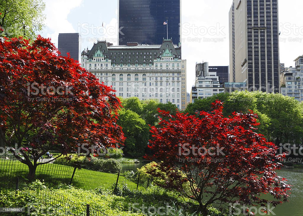 Southern View from Central Park Pond stock photo