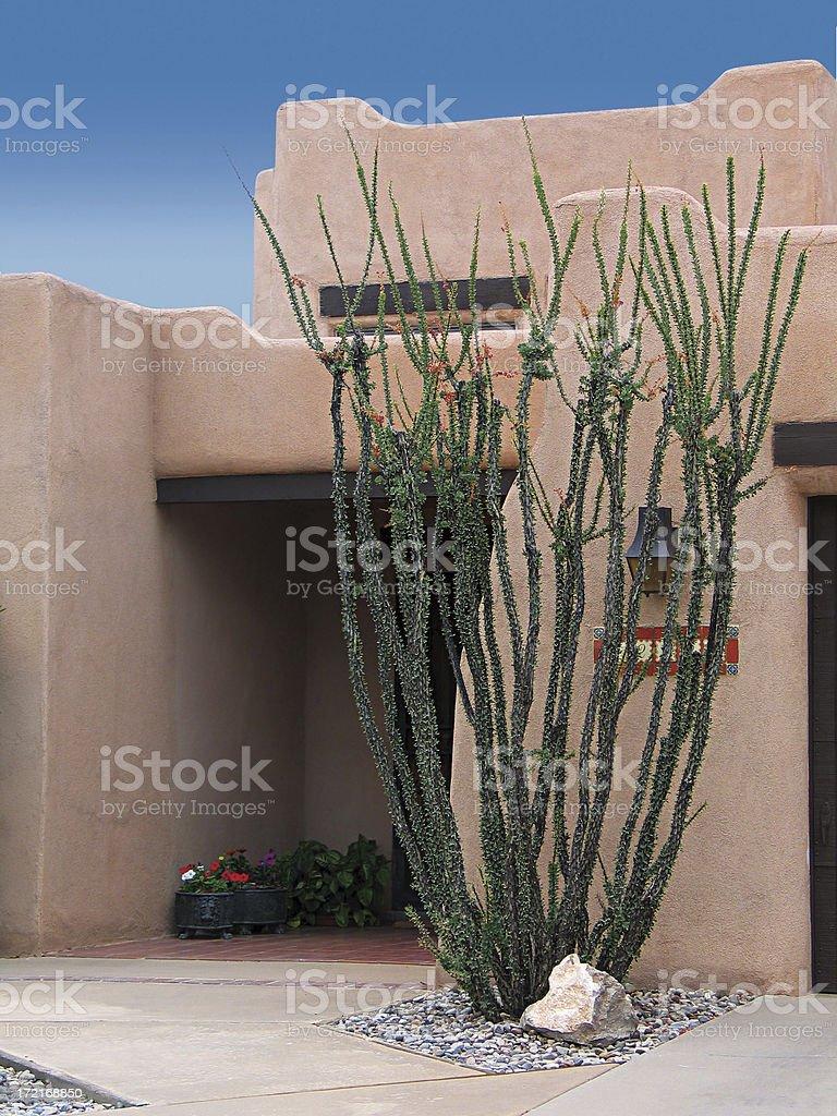 Southwestern Style Home & Ocotillo Cactus royalty-free stock photo