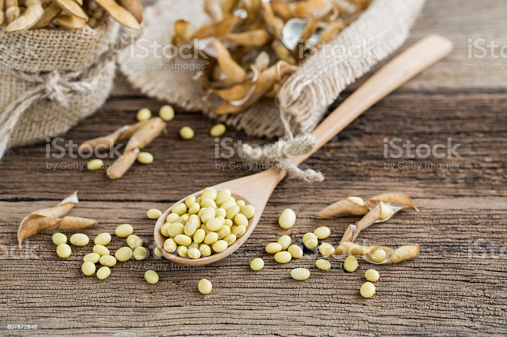 Soya beans in a wooden spoon stock photo