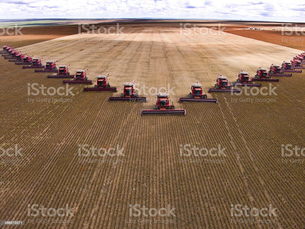 Soybean harvest royalty-free stock photo