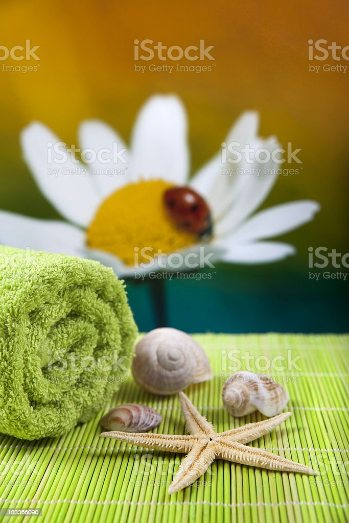 Spa accessoires royalty-free stock photo