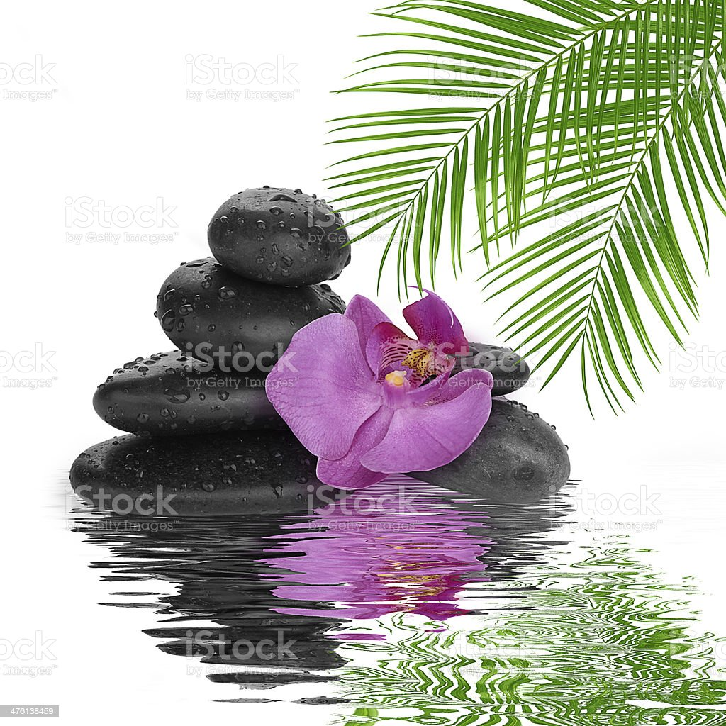 spa Background black stones on water stock photo