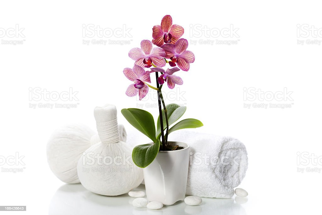 spa composition with beautiful pink orchid royalty-free stock photo