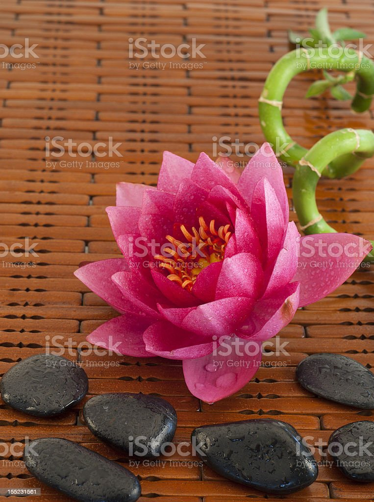 Spa composition with pink water lily royalty-free stock photo