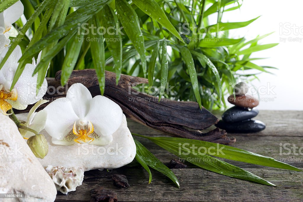 Spa concept decoration with orchids palm and zen stones royalty-free stock photo
