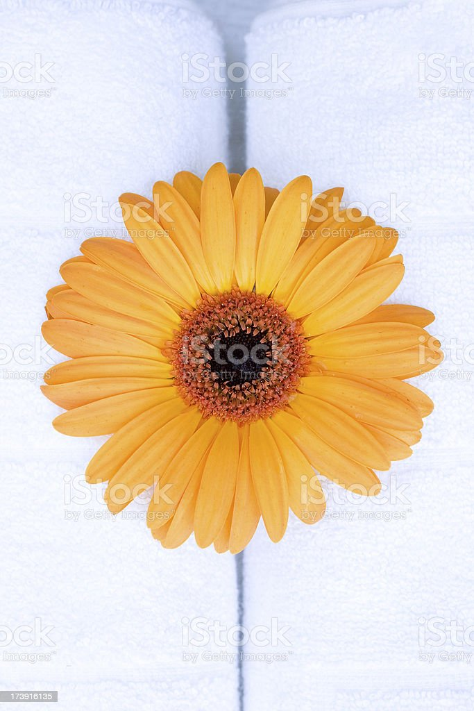 Spa Flower on towels royalty-free stock photo