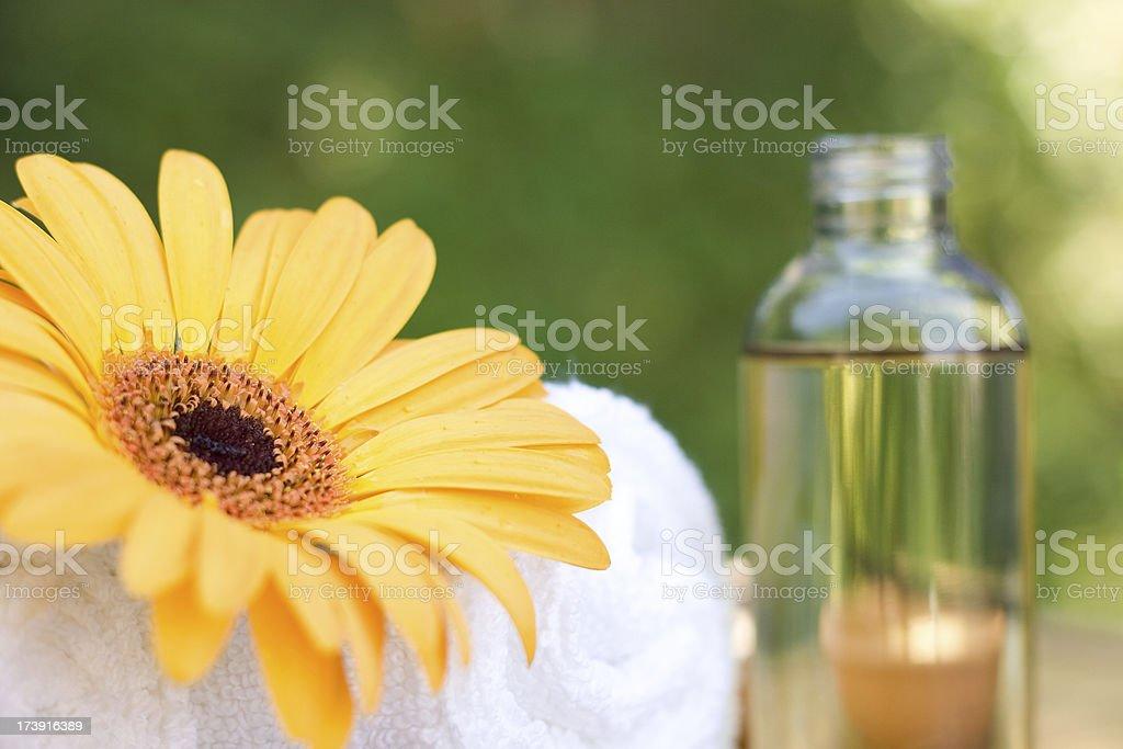 Spa Nature Cosmetics royalty-free stock photo