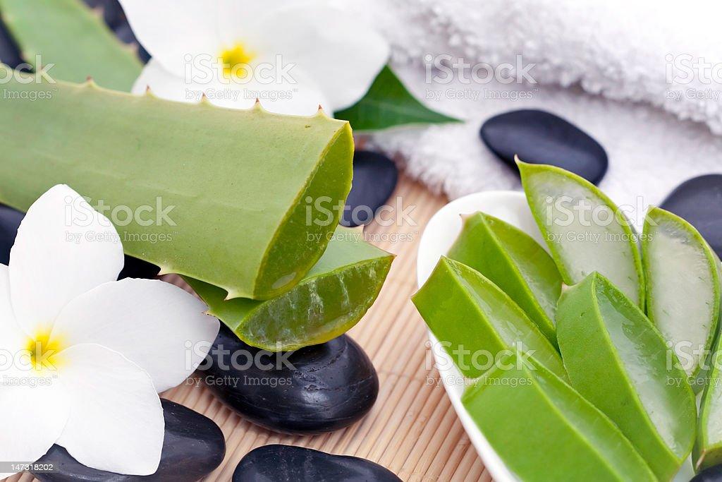 Spa set with Aloe vera stock photo