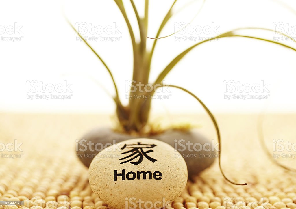 Spa Still life of air plant with home stone royalty-free stock photo