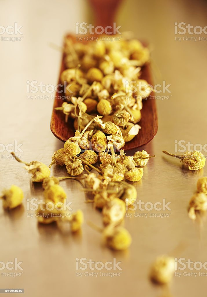Spa still life of Camomile flowers in wooden spoon royalty-free stock photo