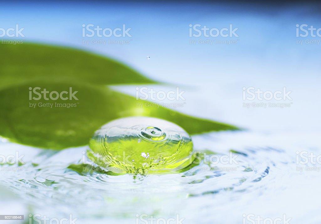 Spa still life (shallow DoF) royalty-free stock photo
