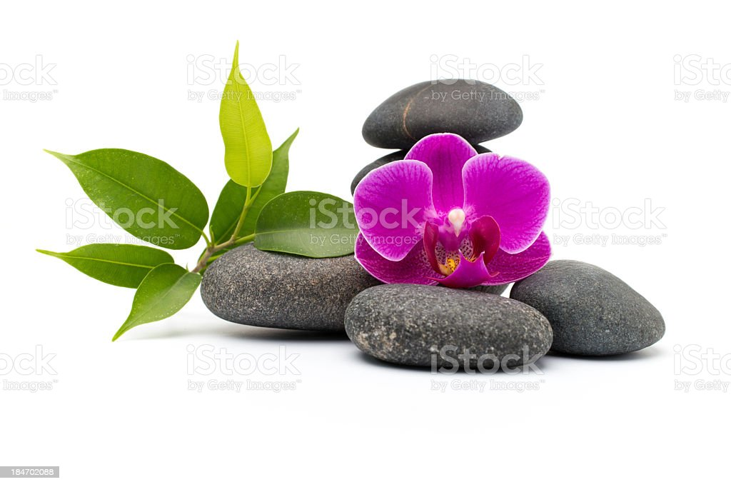 Spa stones with leaves isolated on white background stock photo