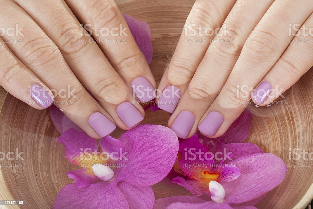 Spa Treatment For Hands stock photo