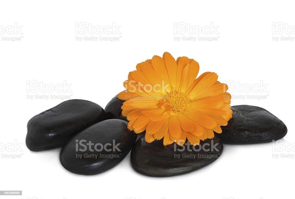 Spa Treatment Stones royalty-free stock photo