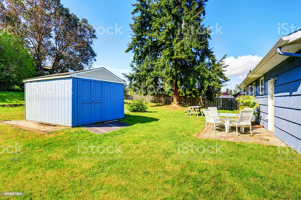Spacious back yard of blue house with small shed and grass filled...