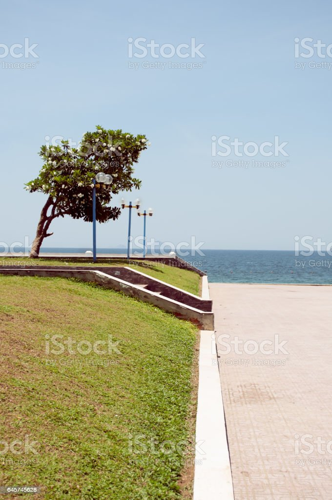 Spacious seafront inside city with lawn and lanterns stock photo