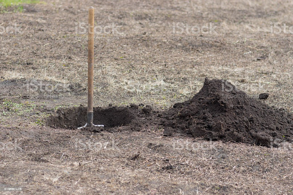 Spade, hole and heap of soil in early spring garden stock photo