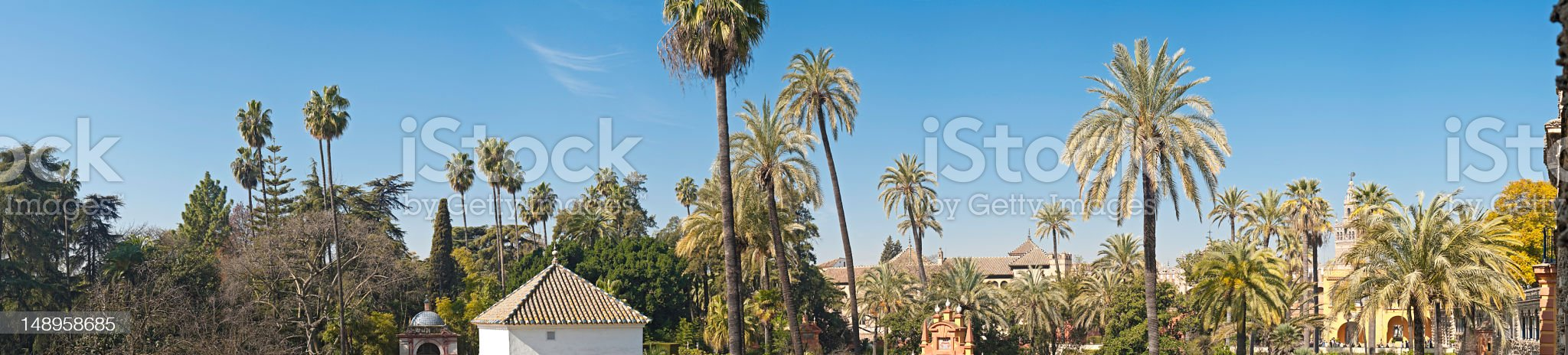Spain Andalusian palms panorama royalty-free stock photo