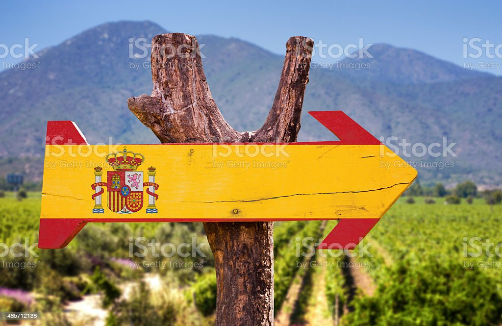 Spain Flag wooden sign with vineyard background stock photo