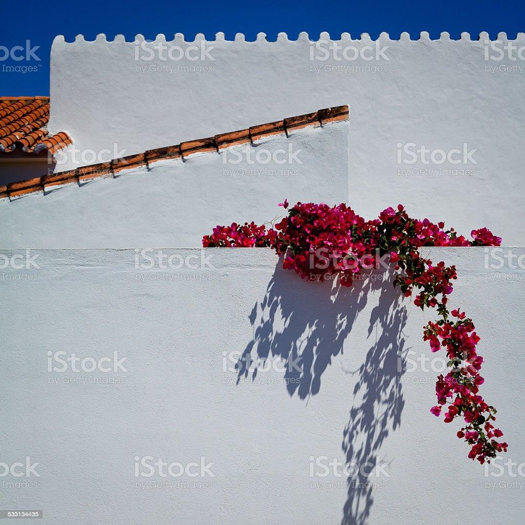 Spain street Marbella flowers bougainvillea stock photo